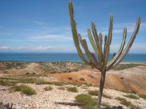 3G- Paseo a caballo por la montana en Margarita